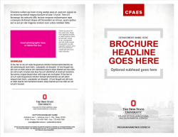 Academic Brand Brochure, Option 3, 8.5x11 Bifold, Exterior