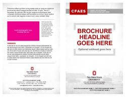 Brand Brochure, Option 3, 8.5x11 bifold, Exterior