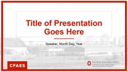 Brand PowerPoint Basic theme
