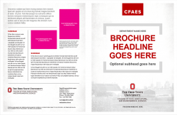 Academic Brand Brochure, Option 3, 11x17 Bifold, Exterior