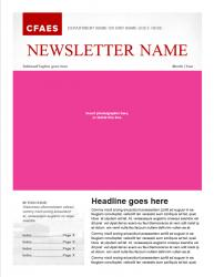 Brand Newsletter, 4 page template, page 1
