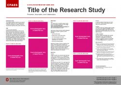 Brand Research Poster, 30x21